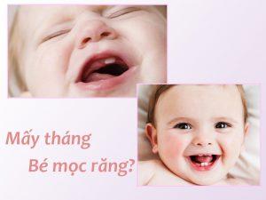 Mấy tháng trẻ bắt đầu mọc răng sữa ?