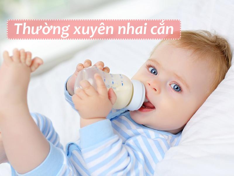 Thường xuyên nhai cắn chính là dấu hiệu điển hình nhất cho thấy trẻ sắp mọc răng